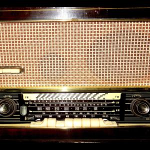Shure Model 55 Vintage